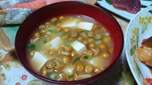 なめこと豆腐の味噌汁*