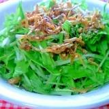 水菜とカリカリじゃこサラダ&ついでのドレッシング