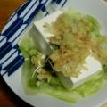 レタスのとろーり豆腐あんかけ
