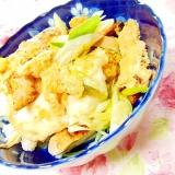 ❤葱と鶏もも肉とドリトスの卵とじ丼❤