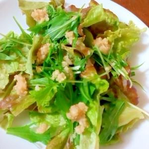 生姜サラダ