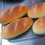 バインミー用パン