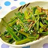 作り置き(/・ω・)☆④空芯菜とえのきの辛旨サラダ