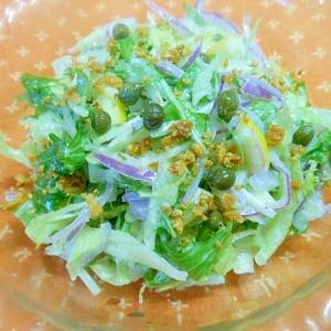 ★赤玉葱・水菜・レタスのサラダ★