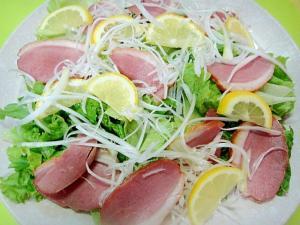 合鴨と長ネギレモンのサラダ
