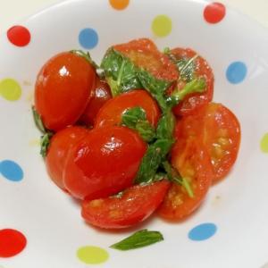 簡単 ! プチトマトのバジルソテー
