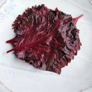赤紫蘇の酢漬け