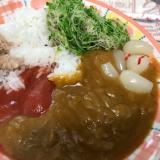 激辛&トマトスプラウト5色カレー