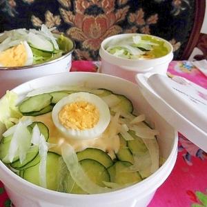 玉葱サラダのお弁当