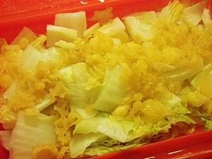 シリコンスチーマーで!白菜と天かすの煮浸し
