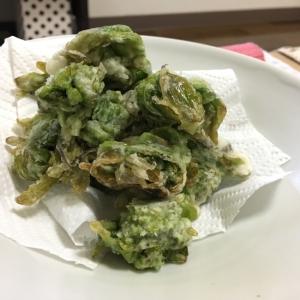 春の訪れ!ふきのとうの天ぷら