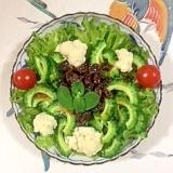 リーフレタス 、カリフラワー、ゴーヤのサラダ