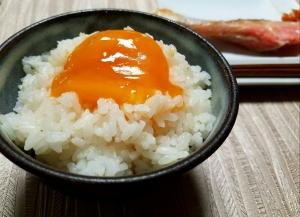 とろ~り濃厚 至福の卵かけご飯