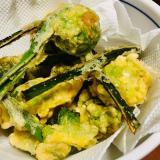 小鍋でちょー簡単!こごみとふきのとうの天ぷら