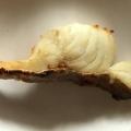 鱈の塩焼き(トースター)
