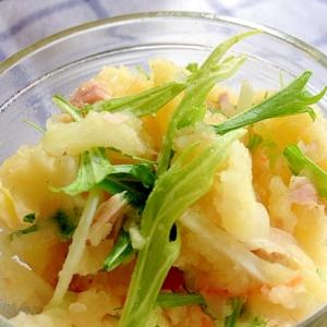 ノンマヨ!水菜とツナのポテトサラダ