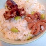 〈半夏生〉玄米入り 小だこ煮と枝豆の混ぜごはん