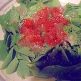 沖縄野菜☆サクナのサラダ