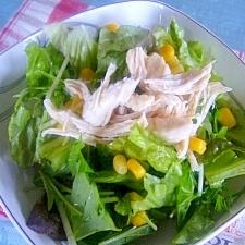 ボリューム満点 ヘルシー蒸し鶏の野菜サラダ