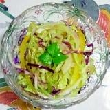 パプリカ、玉葱、紫キャベツ、レタスのサラダ