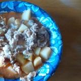 豚肉とじゃがいものケチャップ煮