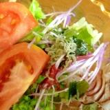 ちりめんとラディッシュの新芽海藻のサラダ