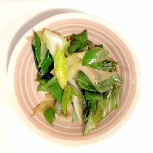 簡単☆シンプルな長ネギの炒め物