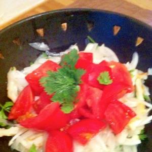 新玉葱とパクチーでタイ風サラダ