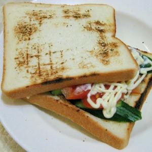 ホットサンド 辛子マヨネーズトマトきゅうり