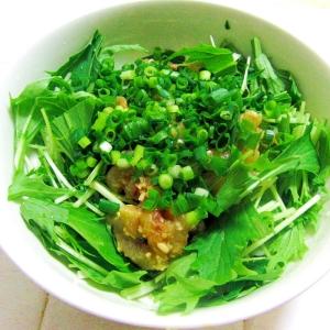 トビウオの漬けと水菜のサラダ