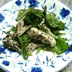 鶏胸肉と水菜の胡麻サラダ