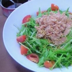 水菜とツナの簡単(ズボラ?)缶ドレッシングでサラダ