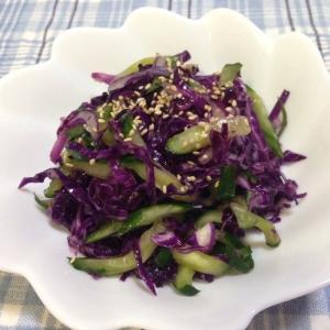 紫キャベツときゅうりのサラダ♪