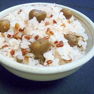 赤米の入ったむかごご飯