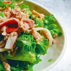 わさび菜とツナとカニカマの簡単サラダ