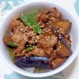 夏野菜と豚肉の甘味噌丼++