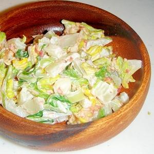 白菜の梅おかかサラダ