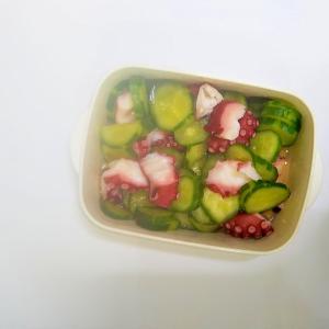 たこと胡瓜の酢の物