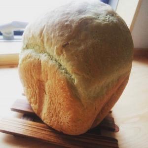 栄養満点☆抹茶味の青汁パン