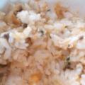 パクパク離乳食 あじのトマトソースご飯