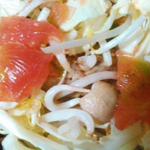 もやしキャベツ熟しトマトのサラダ