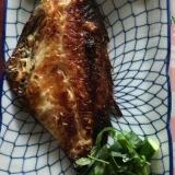 きゅうり、赤魚粕漬け、クレソンのプレート