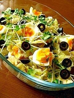 春キャベツとゆで卵のサラダ