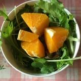 クレソン、水菜、ガーデンレタス、オレンジのサラダ