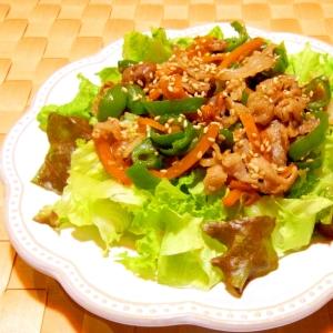 豚肉とピーマンと人参炒めのっけサラダ