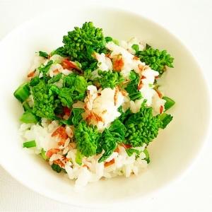 菜の花と小海老のご飯
