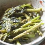 タラの芽とうどの炒め煮