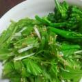 水菜ごまサラダ