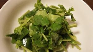 きゅうりとパクチーのサラダ