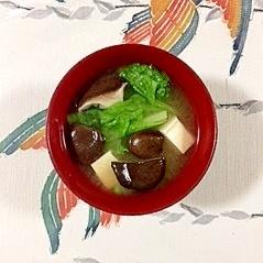 しろ菜、塩とうふ、ひらたけのお味噌汁